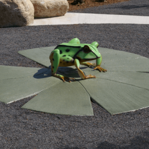 Discovery playground frog on lilypad