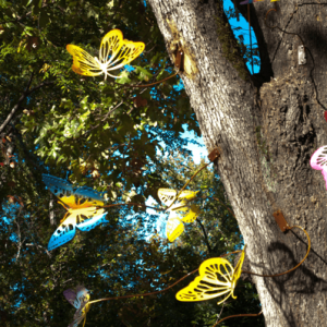 Opportunities Inc tree of butterflies