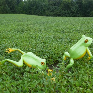 Beechwood Metal Frogs Art