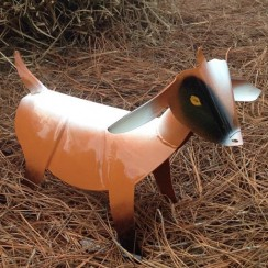 Painted Goat